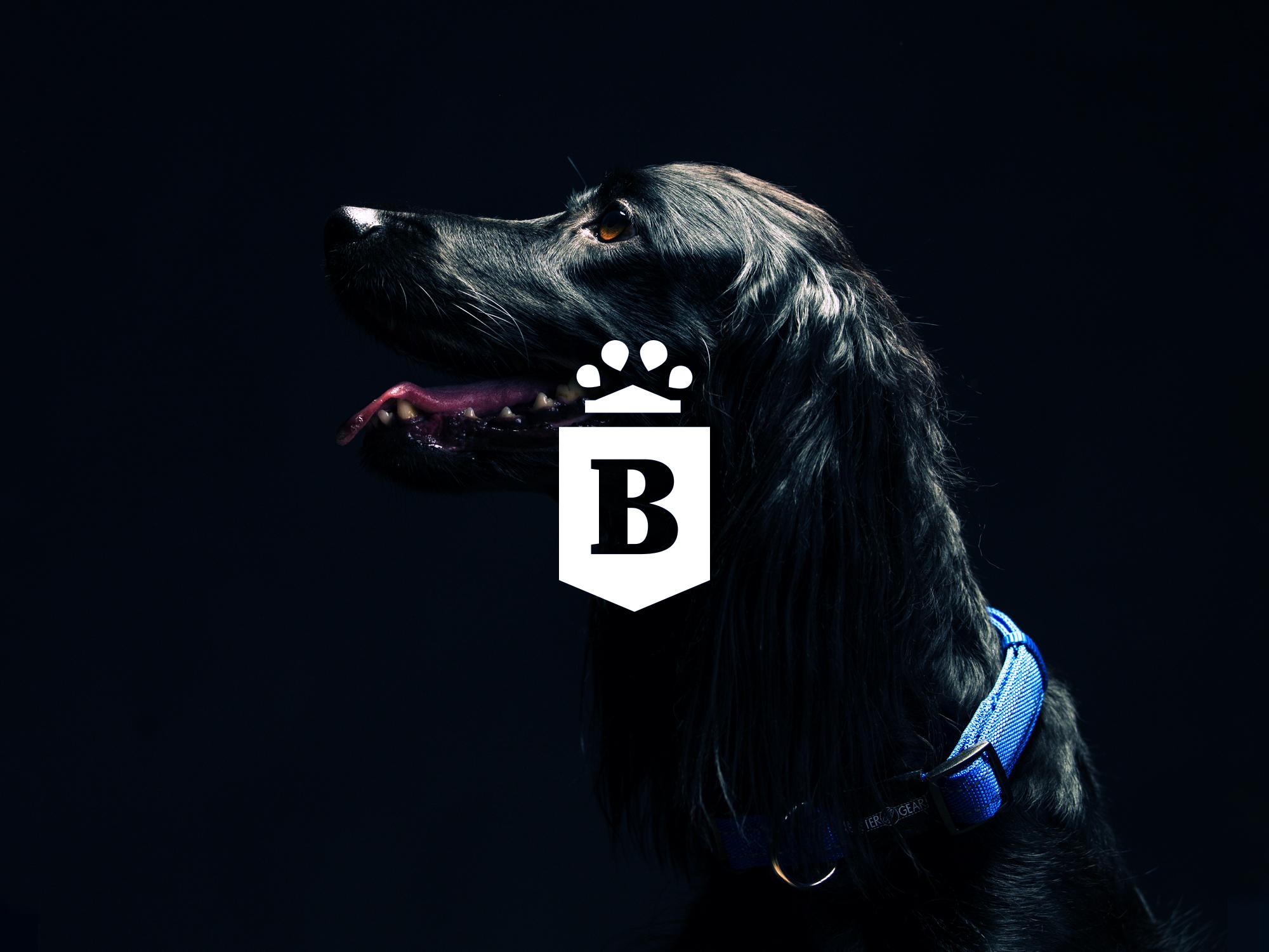 Baldr-logo